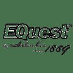 1 equest trans e1575756851849